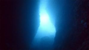 熱海ダイビング 小曽我洞窟 エアクルーズスキューバダイビング